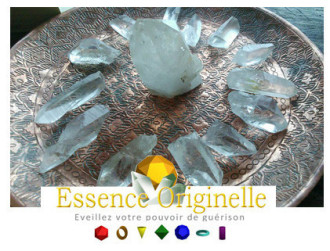 Essence Originelle_thérapie energetique